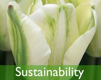 Sustainability & MPS